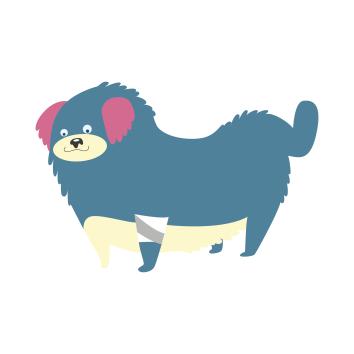 cani singoli-04